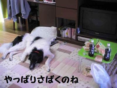 2009_0825_140837pic_0003_2
