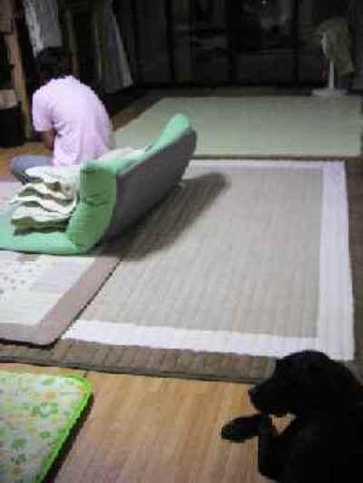 2009_0830_213112pic_0007