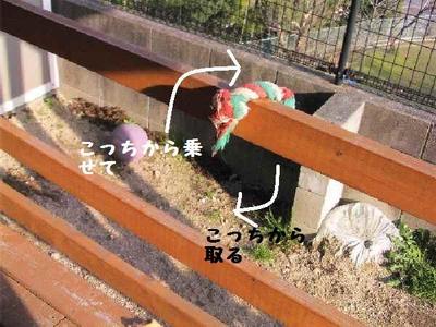 2010_0330_173731pic_00011