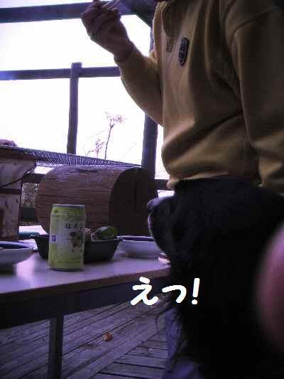 2010_0503_194400pic_0023_2
