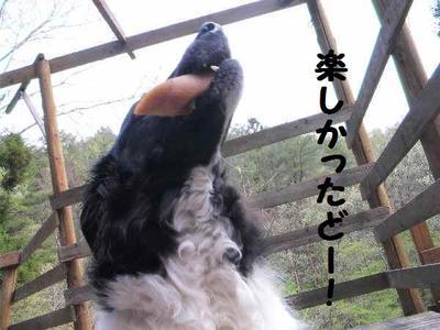2010_0504_143357pic_0034