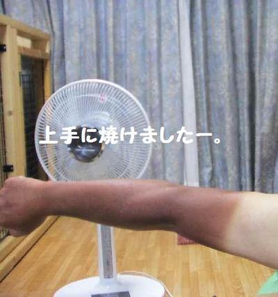2010_0818_231542pic_0119_2