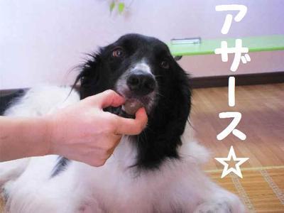 2010_0912_111615pic_00391