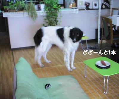 2010_0922_153320pic_00111