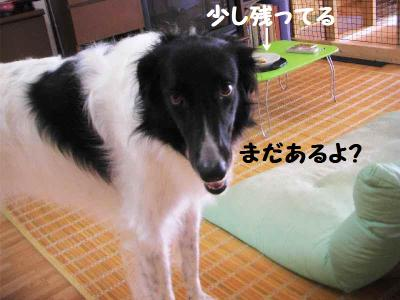 2010_0922_161121pic_00191