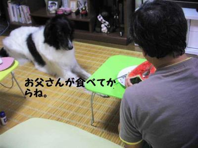2011_0810_214805pic_00061