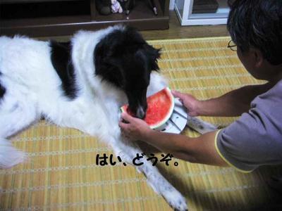 2011_0810_215543pic_00101
