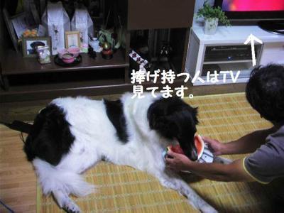 2011_0810_215559pic_001111