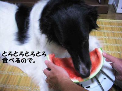 2011_0810_215607pic_00121