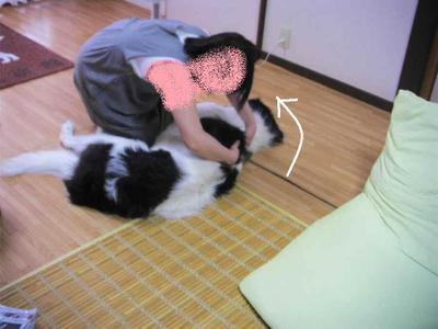 2011_0827_161101pic_00241